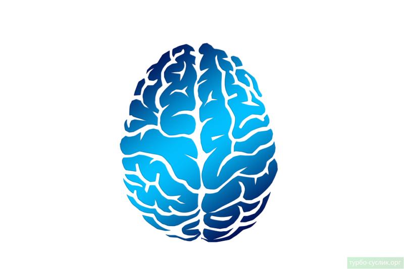 Повреждение головного мозга - одна из причин агнозии